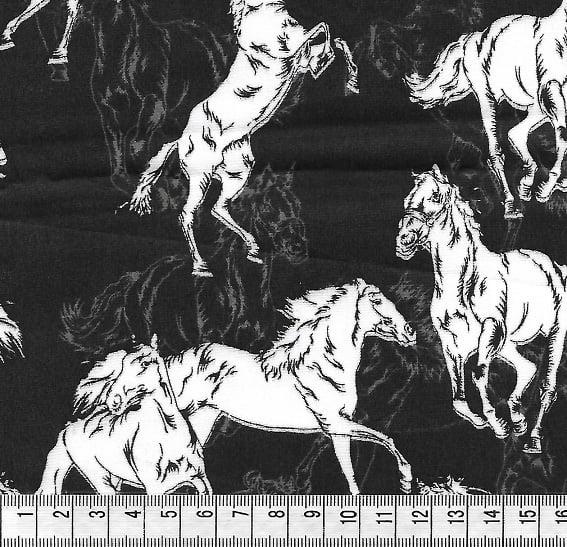 Cavalo Branco Fundo Preto
