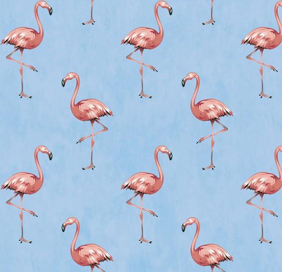 Flamingo Azul Claro