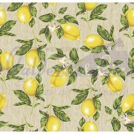 Tecido Tricoline Limão Siciliano Bege Claro